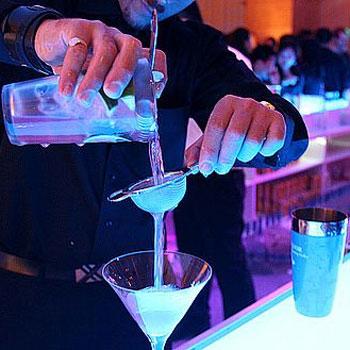 Bartender best cocktail shaker strainer
