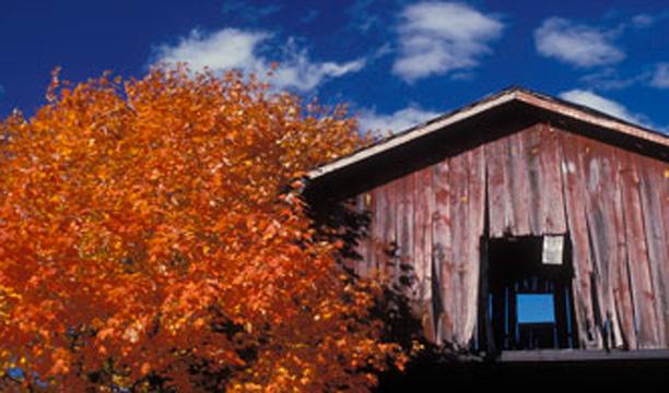 Willett Distillery Kentucky Bourbon Trail Craft Tour