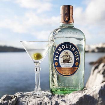 Plymouth gin martini