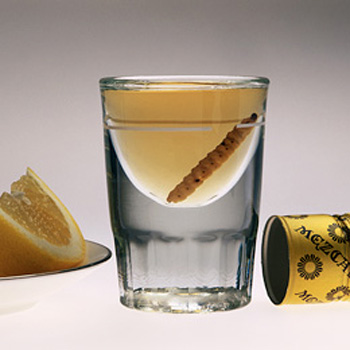 worlds top-10-drinking-rituals