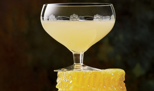 Prohibition-cocktail-Bees-Knees
