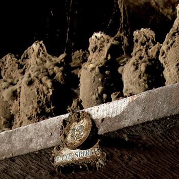 World's-oldest-rum-auction