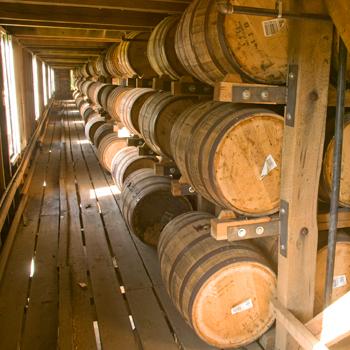 American-oak-barrels
