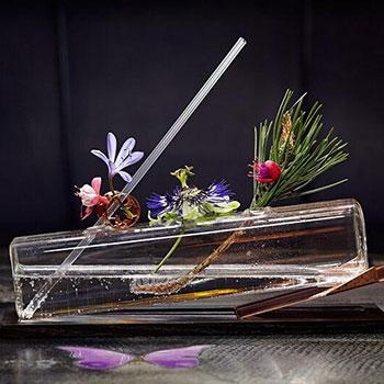 Cocktail-garnishes
