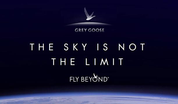 Grey-Goose-space