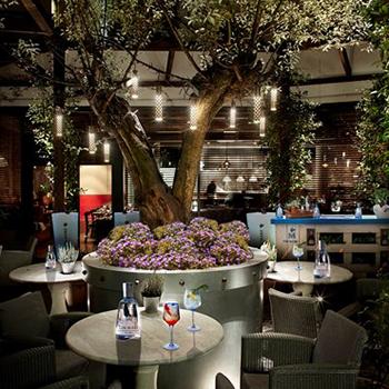 Gin Mare Opens Botanical Garden Bar In London