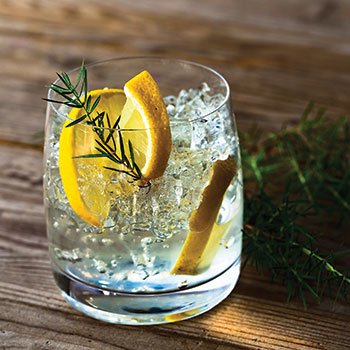 Gin-brands-to-watch
