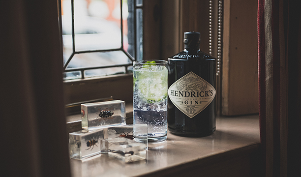 My-Expectations---Hendrick's-and-Tonic-Perfect-Serve