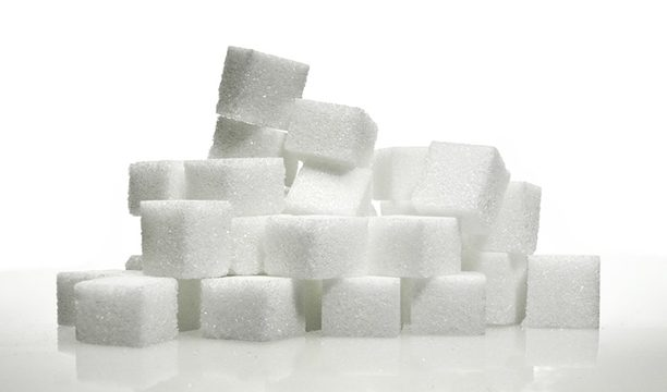 sugar-trend-web