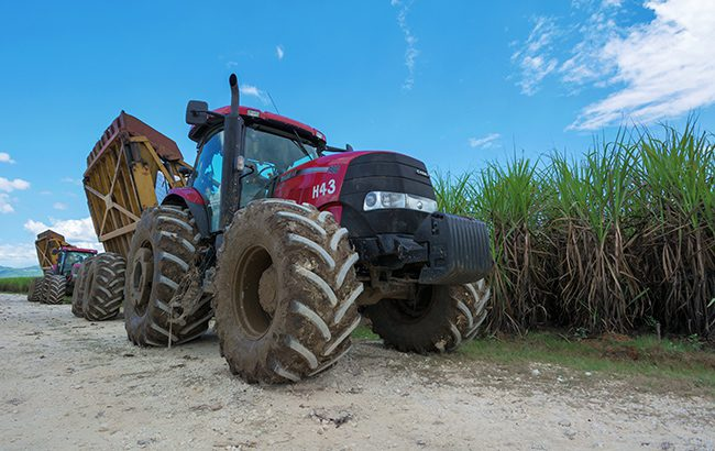 The wheel thing: tractors harvest cane