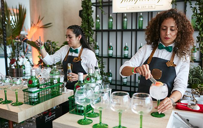 Tanqueray: consumers plump for gin