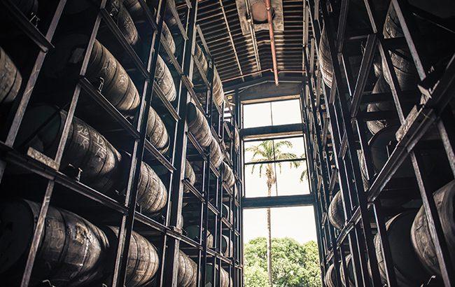 Rum ageing at Diplomático