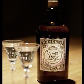 Monkey-47 gin