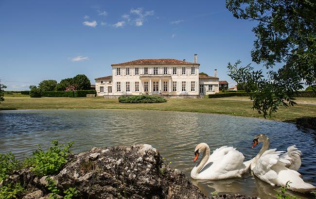 Swans' way: Camus' château