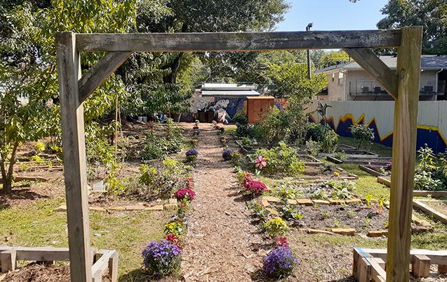 Sip of Paradise garden
