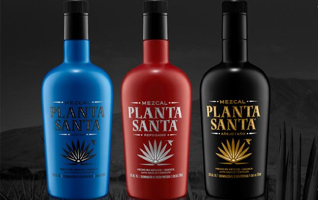 Planta Santa mezcal
