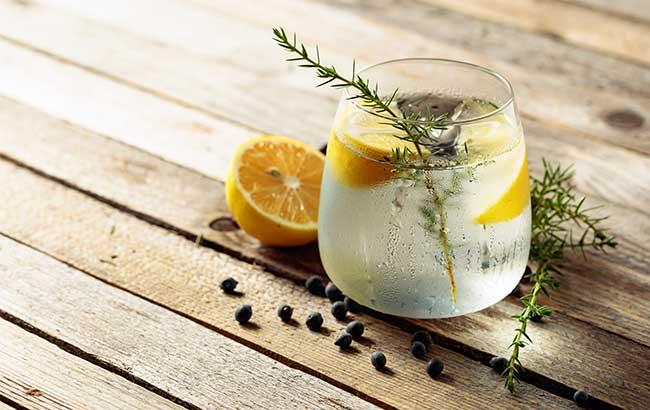 Gin and tonic - spirits tasting